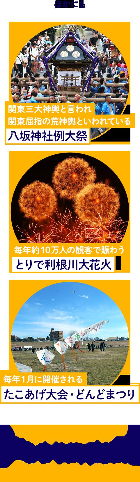 ほかにも、関東三大神輿と言われ関東屈指の荒神輿といわれている「八坂神社例大祭」、毎年約10万人の観客で賑わう「とりで利根川大花火」、毎年1月に開催される「たこあげ大会・どんどまつり」取手は楽しいイベントやスポットが盛りだくさんです!