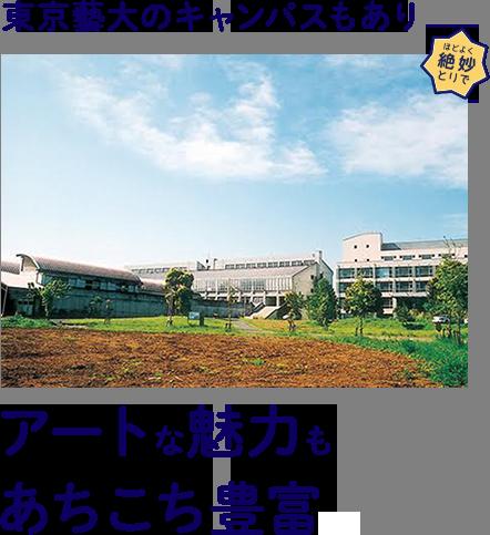 東京藝大のキャンパスもありアートな魅力もあちこち豊富。