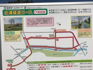 北浦川緑地公園を散歩